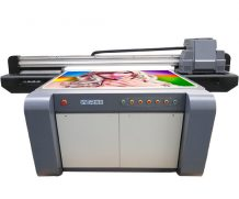 Large Format Docan UV Roll to Roll Printer with Ricoh Printhead for Banner Printing in Czech Republic
